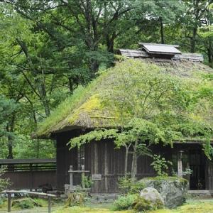 自然散歩、平家の里・・・ 2,  古の栄華が偲ばれる施設です。