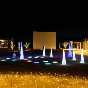 いとまちマルシェにてイルミネーションが点灯!開催期間やグルメ情報をご紹介