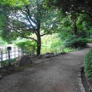 旅ラン→白鳥庭園・3