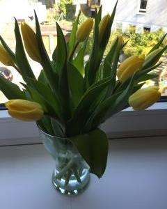 こんな時は花を飾る