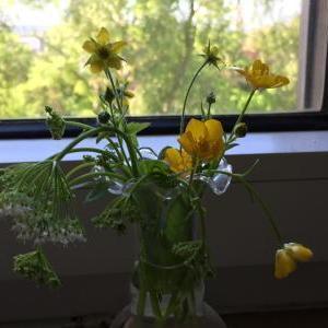 庭の花を飾る