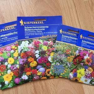 花の種と花壇づくり