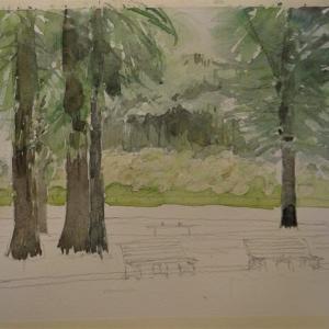 「 麦雨のころ 1 」水元公園
