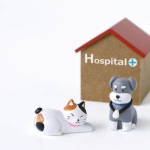 病院での介護の仕方。