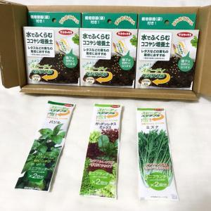 【サカタのタネ】から3種類の、栽培キットが届きました。