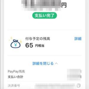 公共料金PayPayで支払いました。