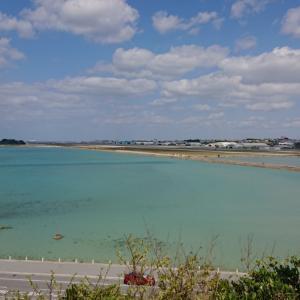 2月の沖縄はいい天気
