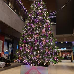 世の中宴会自粛ムード、今年のクリスマス・忘年会は、・・・!?
