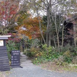 熊本 ドライブの秋② 美味しいカフェを発掘☆隠れ茶房茶蔵カフェ