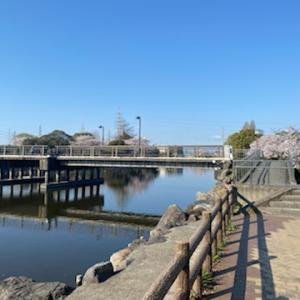一宮市の浅井山公園で休憩
