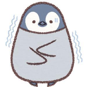 【松下由樹さんも痩せた温活!】この冬を健康で過ごすにはやっぱり腹巻きパンツかな