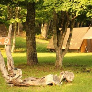 WILD -1運営のキャンプ場で梅雨キャン!