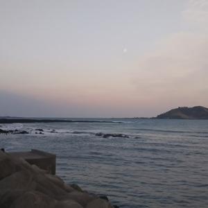 済州 海の食べているようなカルグクス