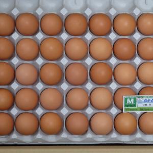 ふるさと納税:千葉県匝瑳市より卵90個~最近のそろばん