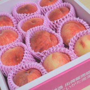 ふるさと納税:新潟県田上町より桃3kg~最近の我が家のゲーム事情