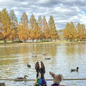 水上公園と最明寺