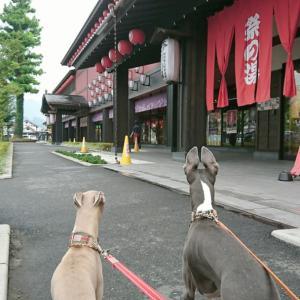 駅前を散歩