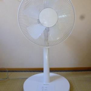急な暑さに慌てます。