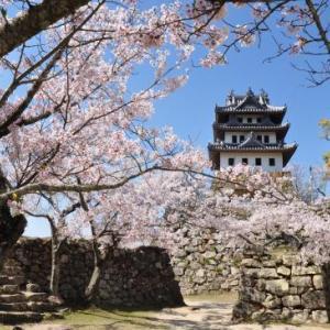 四国路ラストラン 2日目-② 静の里から桜満開の洲本城へ