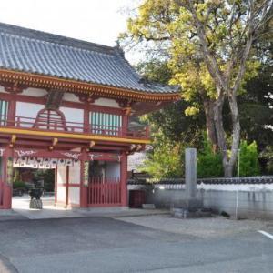 四国路ラストラン 3日目-④ 2番・極楽寺、3番・金泉寺とお参りし、本日は終了です。