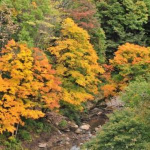 紅葉と出湯 ② 湯の花温泉