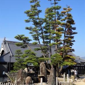 宮島でヨイショ ⑥ 大願寺から大聖院へ