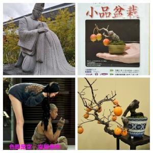 小説盆栽物語 5話 玉林、宗景皇帝に祝福され結婚…豆盆栽
