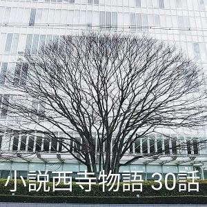 小説西寺物語 30話 女帝(薬子)西大寺爆破命令で大炎上