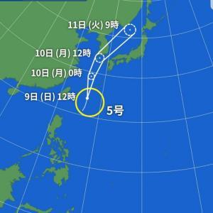 釜山に台風?⚡☔
