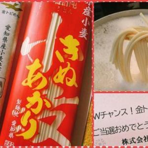 金トビ麺で味噌煮込み風うどん