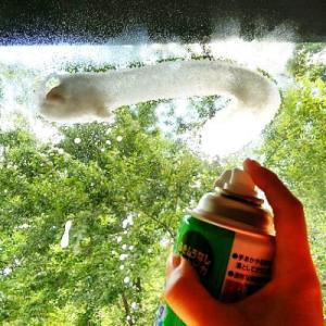 窓拭きは今のうち