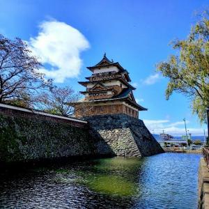 諏訪の高島城、梶の木