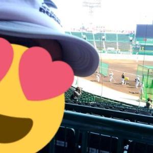 大阪夏の旅ー4 阪神甲子園球場