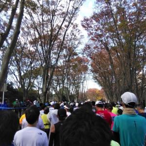 フルマラソン完走100回カウントダウン 62 「速報! つくばマラソンエントリー!!」