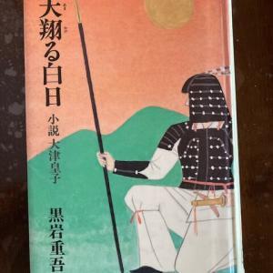 小説大津皇子 「天翔ける白日」