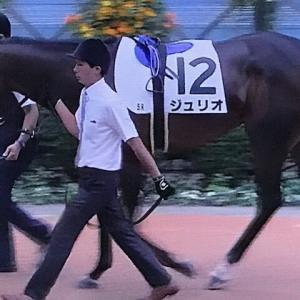 ジュリオ 2020/09/21 メイクデビュー中山、鼻差の2着惜敗