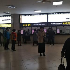 釜山西部バスターミナル9:20発のバスで浦項へ。浦項バスターミナル内の食堂でチャムチキンパッ