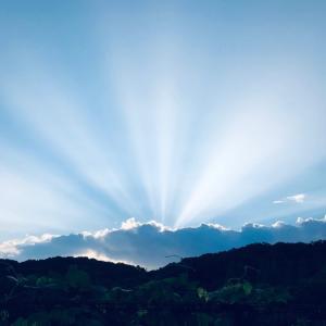 ◆ ある日の朝陽