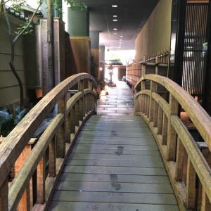 京都と花伝と和食とランチと日本酒と鯛のお造りとおかき揚げとミーナとユニクロと生タピオカと親子丼