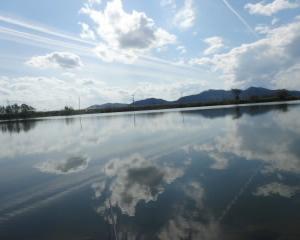 滋賀の川で秋の小物釣り