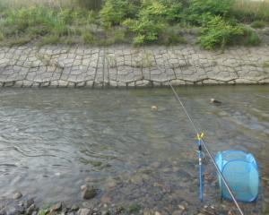 滋賀 2018年7月 和邇川で早朝からコアユ釣り