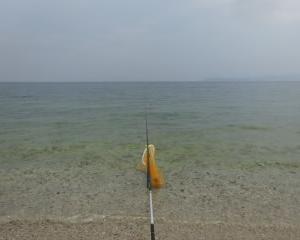 滋賀 琵琶湖でコアユ釣り 2019 北小松浜