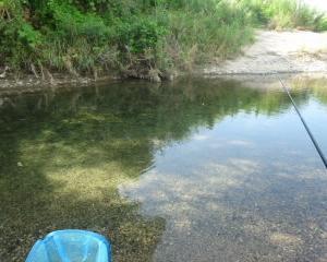滋賀 2018年7月 野洲川でのコアユ釣り 鮎はたくさんいるけど釣れないのだ