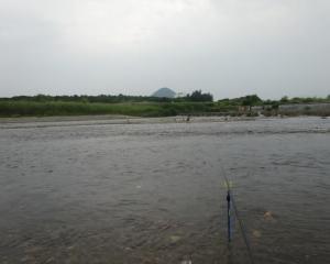滋賀 なかなか調子の上がらない野洲川で小鮎釣り 2019