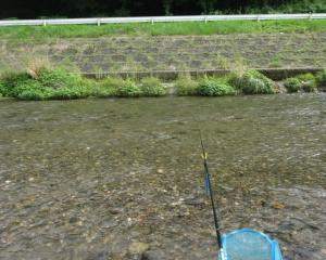 滋賀 和邇川で小鮎釣り 2019最終日は大漁