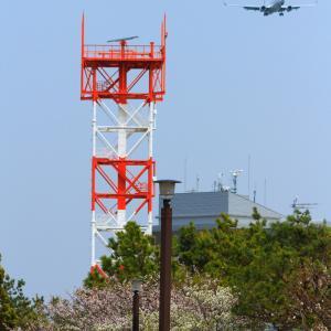 2020.03.22 強風の城南島海浜公園・東京ゲートブリッジへ