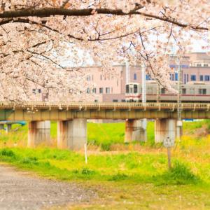 2020.03.28 桜咲く柳瀬川へ ~東武東上線撮影~