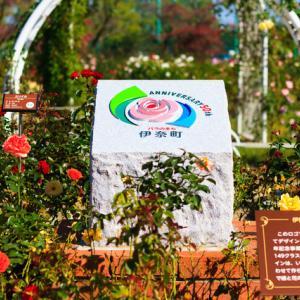 2020.10.27 伊奈町 町制施行記念公園 秋のバラ