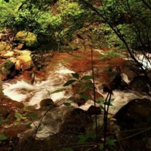 絶景6景バスツアー その3 「横谷渓谷遊歩道」