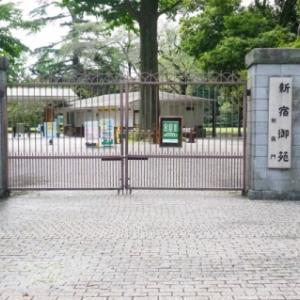 撮影会 6-1 「新宿御苑」